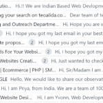 SEO SPAM from India